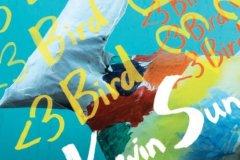 Kevin Sun : <3 Bird